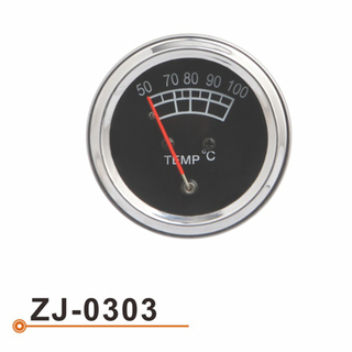 ZJ-0303 Water Temperarture Gauge